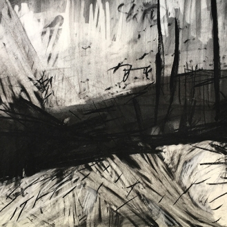 Estuary, charcoal with compressed charcoal, 56 x 76cm, 2001.
