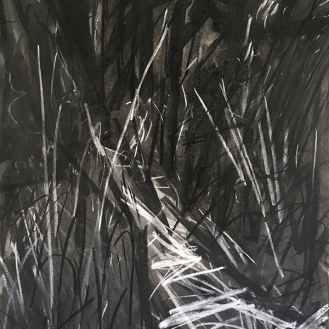 Woodland Path, charcoal with compressed charcoal and white pastel, 56 x 76cm, 2001.